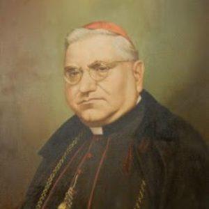 E.mo Card. Gaetano Cicognani, 1953-1962